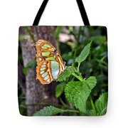 Admiring The Garden Tote Bag