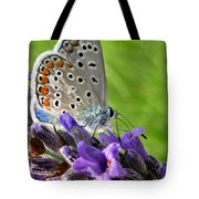 Adonis Blue Butterfly Of Monteriggioni Tote Bag
