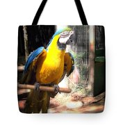 Adopted Macaw - Rescued Parrot Tote Bag