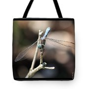 Adorable Dragonfly With Border Tote Bag