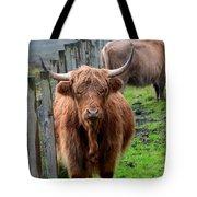 Adorable Highland Cow Tote Bag