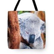 Adorable Koala Bear Taking A Nap Sleeping On A Tree Tote Bag