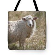 Adorable Sheep Tote Bag
