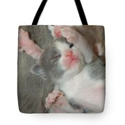 Adorable Siblings  Tote Bag