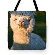 Adorable White Alpaca Portrait Tote Bag