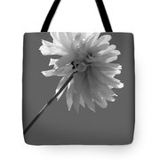 Adored In Bw Tote Bag