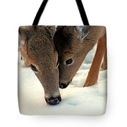 Adoring Love Tote Bag by Karol Livote