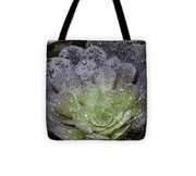 Adorned By Raindrops Tote Bag