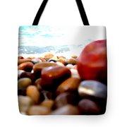 Adriatico Preistorico 2 Tote Bag