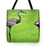Adult Florida Sandhill Cranes Grus Canadensis Pratensis II Usa Tote Bag
