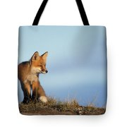 Adult Red Fox On The Tundra In Late Tote Bag