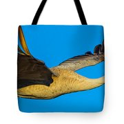 Adult Sandhill Crane Tote Bag
