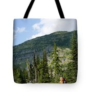 Adult Woman Hiking Through An Alpine Tote Bag