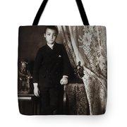 African American Boy, C1899 Tote Bag