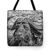 African Buffalo V4 Tote Bag