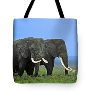 African Bull Elephants In Rain Endangered Species Tanzania Tote Bag