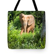 African Elephant Coming Through Trees Tote Bag