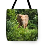 African Elephant Eating In The Shrubs Tote Bag