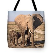 African Elephant Mother And Calf Tote Bag