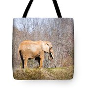 African Elephant On A Hill Tote Bag
