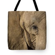 African Elephant Tote Bag