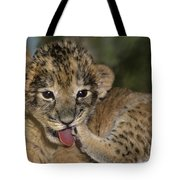 African Lion Cub Wildlife Rescue Tote Bag