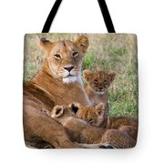 African Lioness And Young Cubs Tote Bag