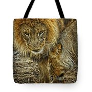 African Lions 6 Tote Bag
