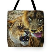 African Lions 7 Tote Bag
