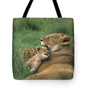 African Lions Mother And Cubs Tanzania Tote Bag