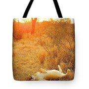 African Mammals Tote Bag