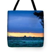 African Panoramic Sunset Landscape Tote Bag