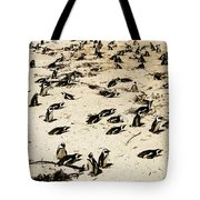 African Penguins Tote Bag by Oliver Johnston