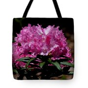 African Pink Tote Bag