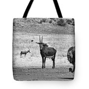 African Plains Tote Bag
