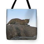 African Safari Leopard 1 Tote Bag