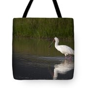 African Spoonbill   #0202 Tote Bag