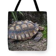 African Spurred Tortoise Tote Bag