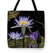 African Waterlily Dazzle -- Plus Dragonfly Tote Bag