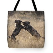 African Wild Dogs Playing Lycaon Pictus Tote Bag