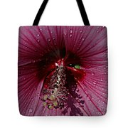 After A Rain Tote Bag