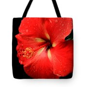 Georgia Red Hibiscus After A Rain Greensboro Georgia Art Tote Bag