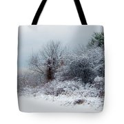 after Snow Storm Tote Bag