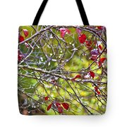 After The Autumn Rain 2 - Digital Paint Tote Bag