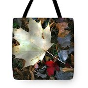 After The Frost Tote Bag