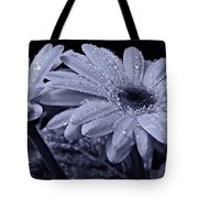 After The Rain Cyan Tote Bag