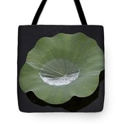 After The Rain- Gungarre Billabong V2 Tote Bag