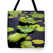 After The Rain- Gungarre Billabong V3 Tote Bag