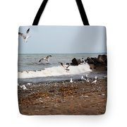 After The Spring Thaw Tote Bag