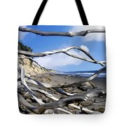 After The Storm Gaviota Tote Bag